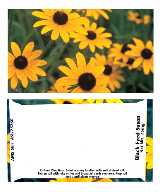 Business Card Black-Eyed Susan Seeds